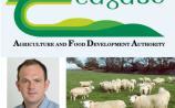 Liver Fluke in Sheep