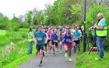 Royal Canal Run