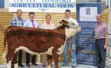 Longford Show & Country Fair 2018