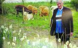 Longford bids a fond farewell to a 'farmer, daffodil breeder, and friend'