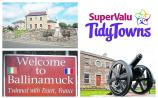 Calls for compensation for Ballinamuck tidy towns team