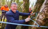 Tapping into Longford's valuable Birchwater harvest