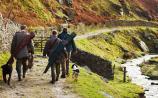 Longford game hunters fume as shooting season falls foul of Covid-19 restrictions