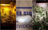 Longford gardaí seize €24,000 worth of suspected cannabis plants and cocaine in two separate drugs busts