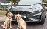 Ford raffle for Irish Guide Dogs