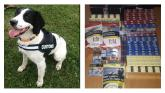 Garda drugs unit seize thousands of cigarettes at commercial premises in Longford town