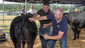 Longford Leader gallery: Glorious sunshine draws large crowds to Co Longford Show & Country Fair