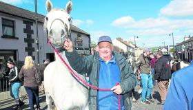 PICTURES | 'Hoofing' around and enjoying the sun at the annual Lanesboro Horse Fair
