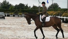 GALLERY | Mosstown Riding Club represents Longford with distinction at National AIRC Dressage Championships
