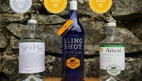 Longford distillery wins three medals at World Gin Masters