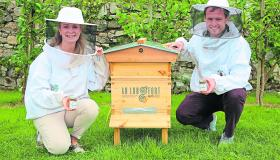 Longford Leader gallery: Buzz...show me the honey!