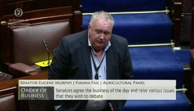 Senator Eugene Murphy calls for GAA inter-county games to be postponed for number of weeks