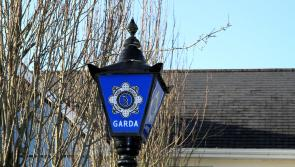 Granard Gardaí launch investigation after man in his early 30's struck by car on N4 in Longford