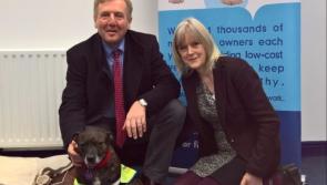 €388,000 for Longford animal welfare organisations