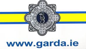 Lack of access to PULSE system is impacting on accurate crime recording for number of Garda stations in Roscommon/Longford division - Murphy