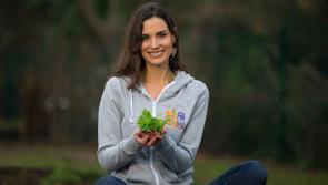 Wellness Coach Alison Canavan wants to Get Longford Growing