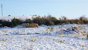 Longford people urged to be winter ready as sleet and snow is being forecast by Met Éireann