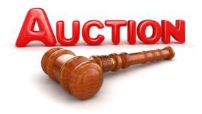Edgeworthstown farm set for public auction