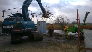 Tree cutting at Madden's Island improves navigation along River Shannon