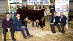 Exciting times for County Longford Agricultural Show as new venue announced for 2017 event