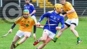 Longford hurlers beat Leitrim to remain on course for promotion
