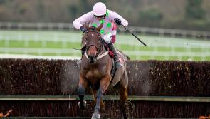 THE PUNTER'S EYE previews Cheltenham as the countdown continues