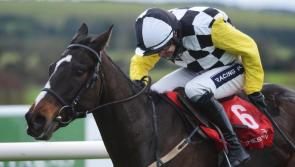 THE PUNTER'S EYE: Grand National Preview Special