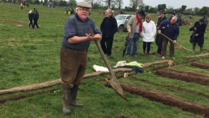 Longford Leader live at the National Ploughing Championships 2017