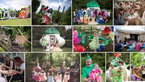 Izzy B's Away with the Fairies day raises €12,500 for Share Care Projects in local hospitals
