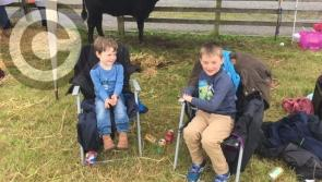 Photo Gallery:  65th Granard Agricultural Show a great success