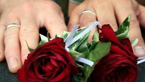 Census Results: Twenty people in same-sex civil partnerships living in Longford