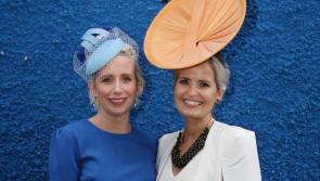 Roscommon Races: Action at Galway Races will provide many pointers for Roscommon racegoers