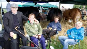 Lots of Longford winners at 60th Arva Show