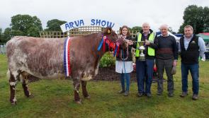 Gallery: Weather fails to dampen spirits as Arva hosts 60th Agricultural Show