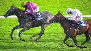 THE PUNTER'S EYE: Galway Races Day 5 Tips - Friday