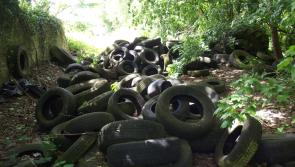 Minister Naughten tackles tyre stockpiles in Longford and around the country