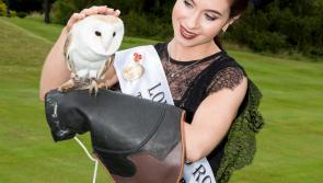Pictures: Owl eyes on Longford Rose as Rose of Tralee Festival kicks off