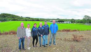 Persistence pays off as UCL Harps end two decade long wait for permanent home on Cavan/Longford border
