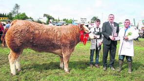 Colmcille Ploughing & Heritage Day on Sunday