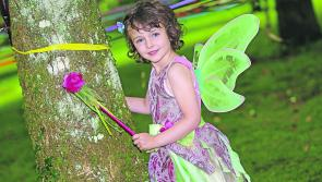 Pictures: Launch of the Ardagh Tree Fairies