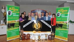 151st Strokestown Agricultural and Industrial Show takes place this weekend