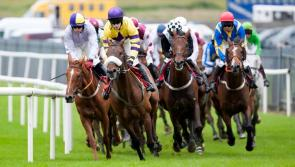 Family day at Roscommon Races next Monday