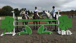 Success continues for Longford Pony Club