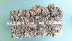 Longford Exhibition 'Memory has a Pulse' to run until tomorrow
