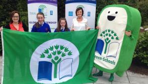 From litter and waste to global citizenship - Longford's Green Schools