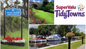SuperValu Tidy Towns 2017:  Abbeyshrule urged to embrace Center Parcs Longford Forest