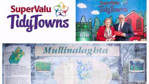SuperValu Tidy Towns 2017: Mullinalaghta praised for harnessing  goodwill of  greater community within parish