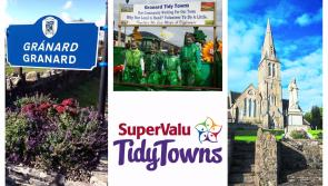 SuperValu Tidy Towns 2017: Granard must voice concerns with Longford County Council  regarding non fulfillment of regeneration commitment