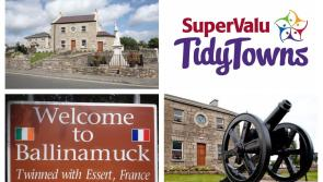 SuperValu Tidy Towns 2017: Establishment of a Junior Tidy Towns Committee recommended for historic Ballinamuck