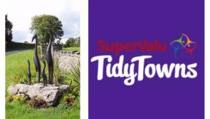 SuperValu Tidy Towns 2017: Proactive committee ensures that Newtowncashel retains its very high standards